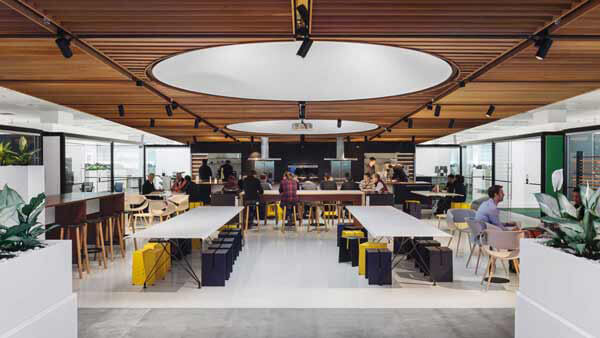 Fisher & Paykel Offices Social Kitchen.