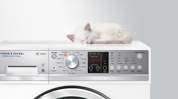 Fluffy White Cat Sleeping atop a Washing Machine.